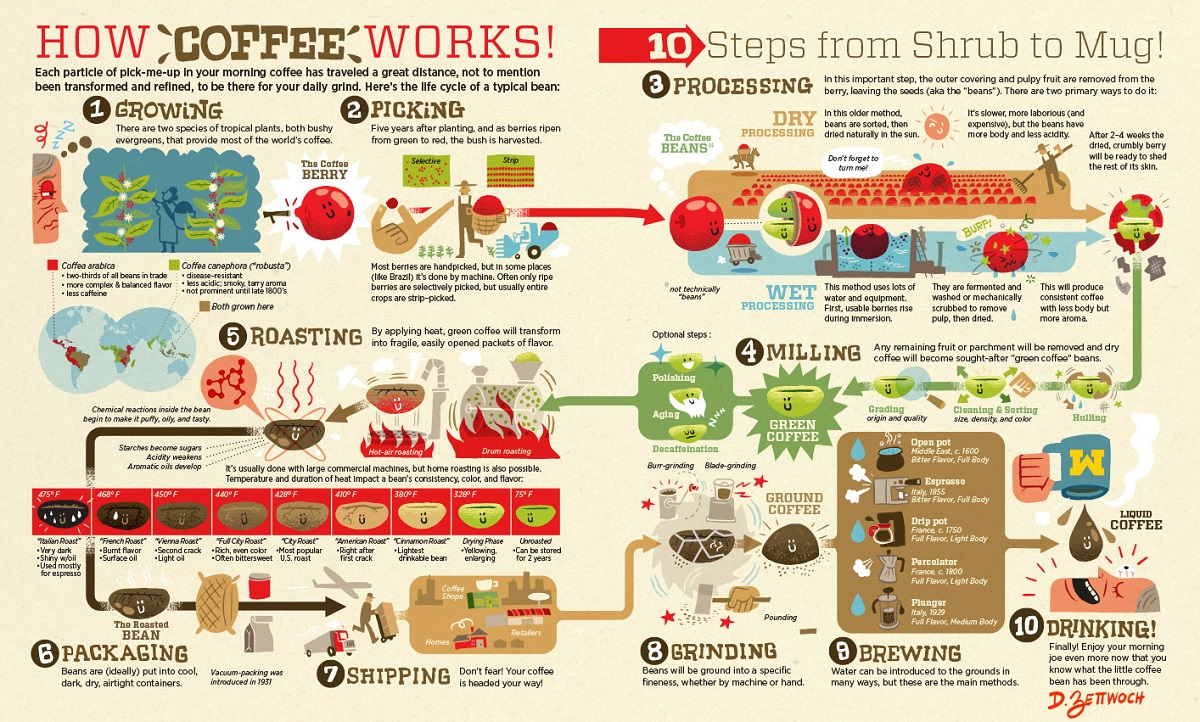 Coffee-supply-visualized-1200