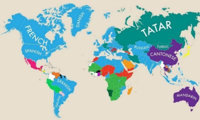 Second Languages Around the World Shareable